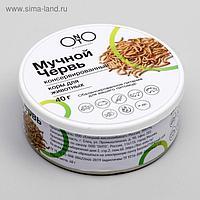 Консервированный корм ONTO для животных, мучной червь, 40 г
