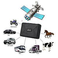 GPS Трекер TKSTAR TK-905 B, для животных, для автомобиля