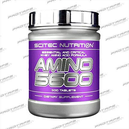 Комплекс аминокислот Scitec Nutrition Amino 5600 500 таб., фото 2