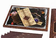 """НАБОР. """"Гарри Поттер. Битва за Хогвартс"""" (БАЗА) + Доп. набор """"ГП. Чудовищная коробка, фото 8"""