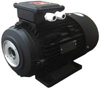 Мотор H112 HP 7.5 2P MA AC KW 5,0 2P