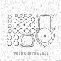 Ремкомплект ТНВД P7 (B)  CP800011/LS
