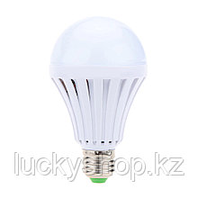 Энергосберегающая лампа с аккумулятором