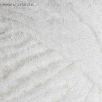 "Пряжа ""Softy Plus"" 100% микрополиэстер 120м/100г (55 белый)"