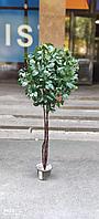 Дерево рускус искусственный