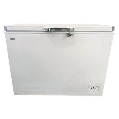 Ларь морозильный Xing BD 330 белый