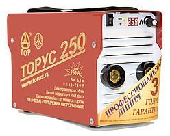 Сварочный аппарат ТОРУС 250 НАКС
