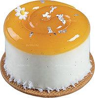 Форма для пирожных Pavoni PAVOFLEX PX4374 Наутилус