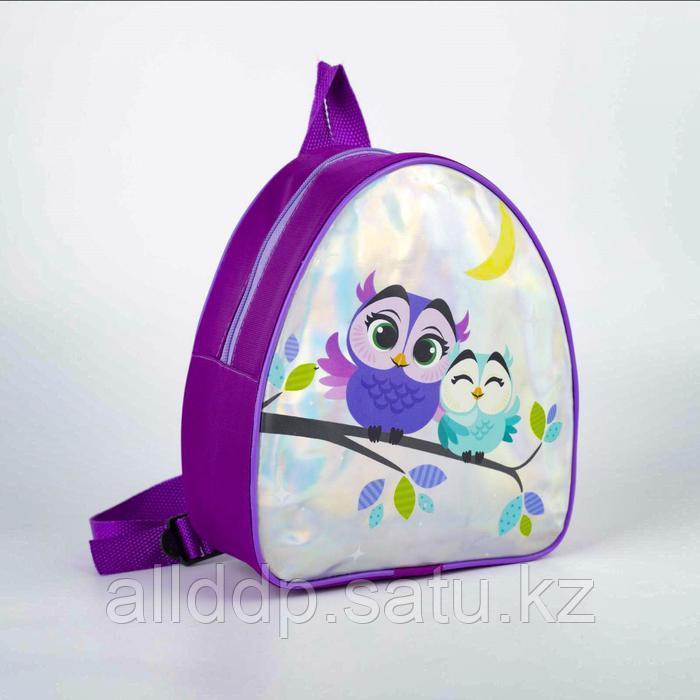 Рюкзак детский «Совушки», голография 23х20,5 см