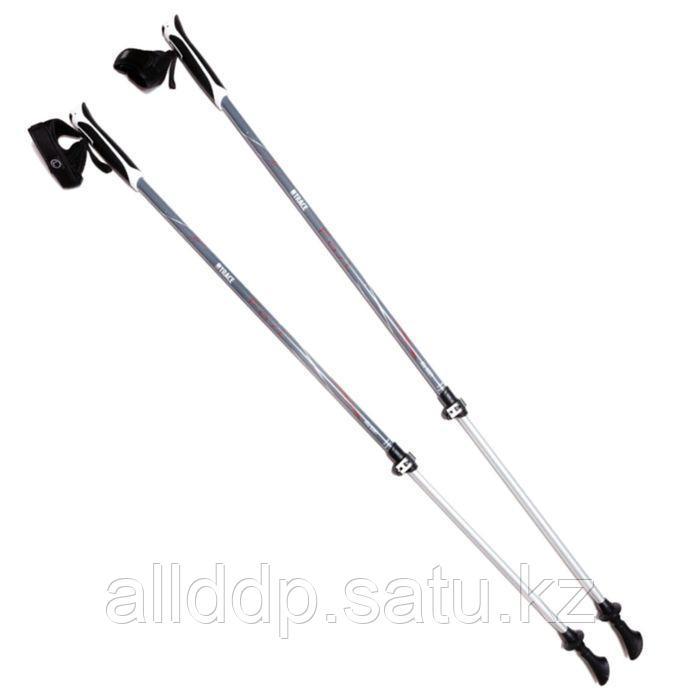 Палки для скандинавской ходьбы NW Fast, комплект-1 пара