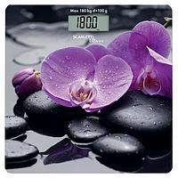 "Весы напольные Scarlett BS33E067, электронные, до 180 кг, 1хCR2032, стекло, рисунок ""камни"" 692219 ..."