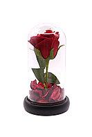 Роза в колбе «18см»