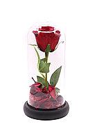 Роза в колбе «22см»