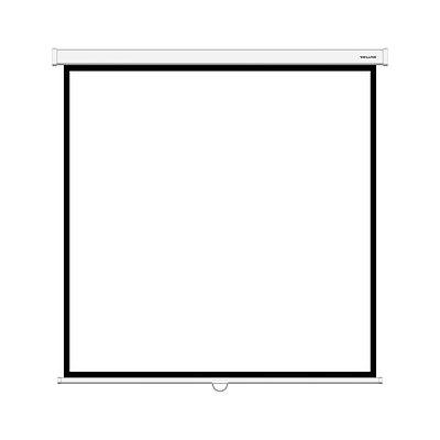 Проекционный настенный экран Deluxe DLS-M180xW, белый/черный