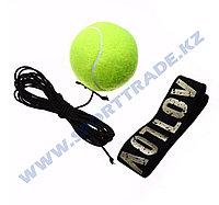 Реакционный мяч (тренажер для бокса)