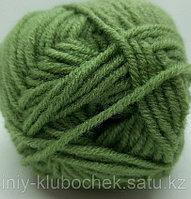 Пряжа для вязания Lanagold Classic (Ланаголд Классик) Зеленая черепаха 485