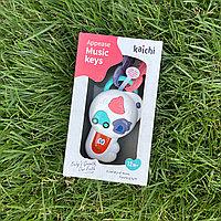 Интерактивная развивающая игрушка Kaichi