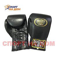 """Кожаные боксерские перчатки """"No Boxing No Life"""" 12 OZ"""