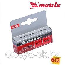 Гвозди 12 мм, тип 300 для степлера, со шляпкой, 1000 шт Matrix Master