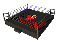 Боксерский ринг на помосте 6х6 м (боевая зона 5х5 м), помост 1 м