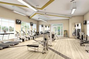 Спортивное оборудование и тренажеры для фитнес-залов