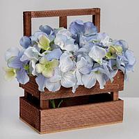 Кашпо флористическое с окном «Темный цвет», 15 х 9 х 18(9) см