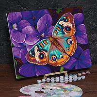 Картина по номерам на холсте с подрамником «Бабочка» 40х50 см