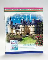 Тетради школьные, в клетку, 36 листов, Castle