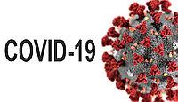 Экспресс-тест для определения антител IgM/IgG к 2019-nCoV (Коллоидное золото)