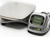 Весы ВЭУ-200 с автономным питанием и выносным пультом управления на гибкой связи (нержавеющая платформа) (рабо