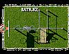 Воркаут BS-95, фото 5