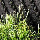 Трава искусственная Divine 45, 45мм, 2м, фото 2
