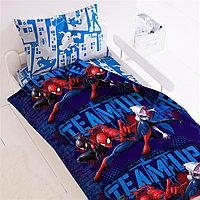 """Комплект постельного белья """"Человек паук - Пауки"""""""