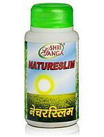 Натурслим для снижения веса, 100 таб, Natureslim Shri Ganga