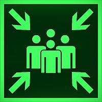 Знак Пункт место сбора на фотолюминесцентной пленке, размер 100*100 E 21