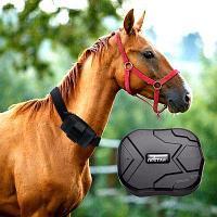 Персональный Трекер ТК-905 батарея до 90 дней, мощный магнит, для лошадей, для авто/мото, грузов и другого