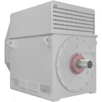 Высоковольтный электродвигатель ДАЗО4-400XK-4ТВ3