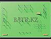 Воркаут BS-222, фото 3