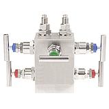 Модели IV30, IV31, IV50, IV51; 3 - 5-ходовой манифольд для приборов измерения дифференциального давления, фото 2