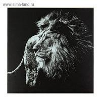 "Картина ""Чёрно-белый лев"" 50*50 см"
