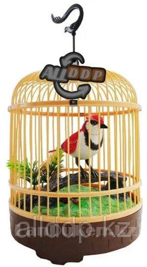 Интерактивная поющая птичка в клетке HL 507 Е (музыкальная игрушка)