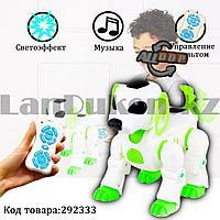 Игрушка Робот собака Лакки интерактивная электронная танцующая музыкальная на радиоуправлении Smart Pet 7588