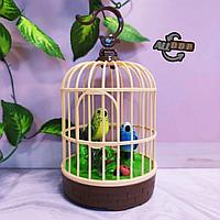Интерактивная поющая птица в клетке HL 526 (музыкальная игрушка)