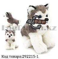 Мягкая игрушка собака Хаски большая с антистрессовой лапкой серая 25 см