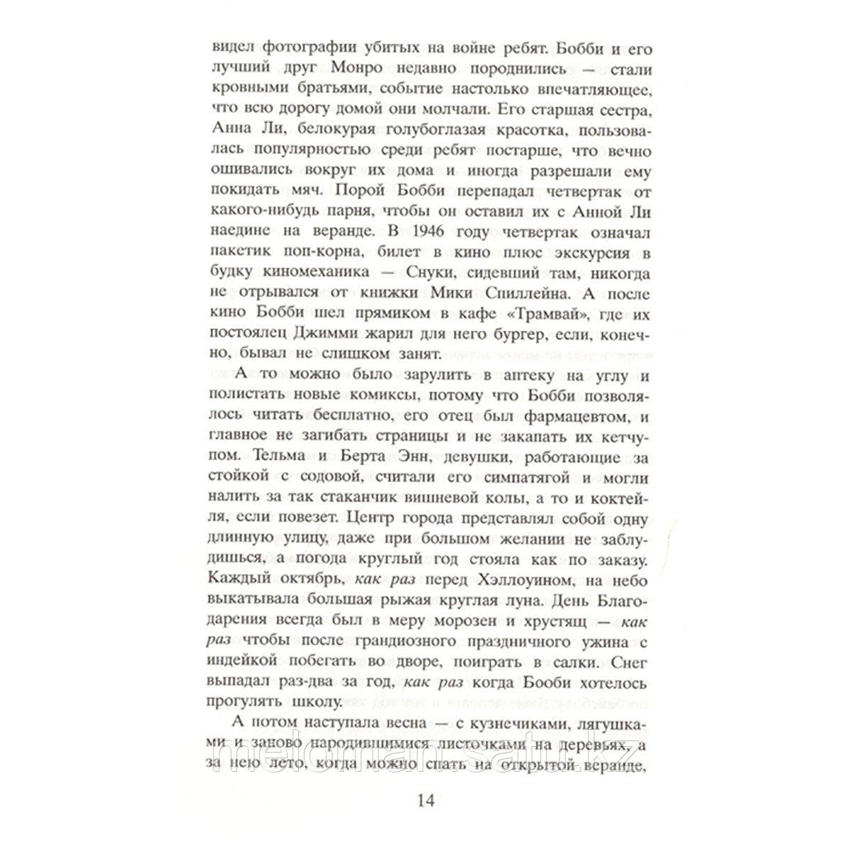 Флэгг Ф.: Стоя под радугой (новая обложка) - фото 7