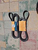 Ремень приводной поликлиновой 7PK3170HD DAYCO
