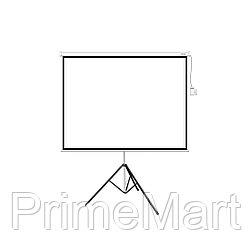 Экран на треноге Deluxe DLS-T244x183W, Раб. поверхность 244х183 см.