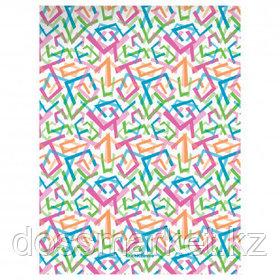 """Папка Erich Krause """"Lines"""" с зажимом, A4 формат, корешок 17 мм, цветной"""