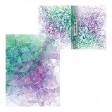 """Папка Erich Krause """"Violet Dynamique"""" с зажимом, A4 формат, корешок 17 мм, цветной, фото 2"""