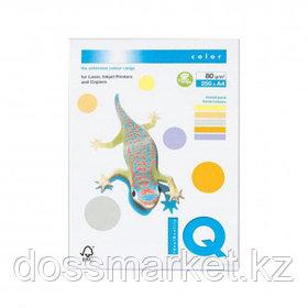 Бумага IQ Color Trend Mixed Packs, А4, 80 г/м2, 250 листов, 5 золотистых цветов